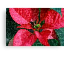 Flower For The Holidays Canvas Print
