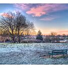 Park HDR Edge by Peter Barrett