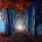 Dreams come true by Viviana Gonzalez