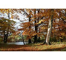 West Tanfield Photographic Print