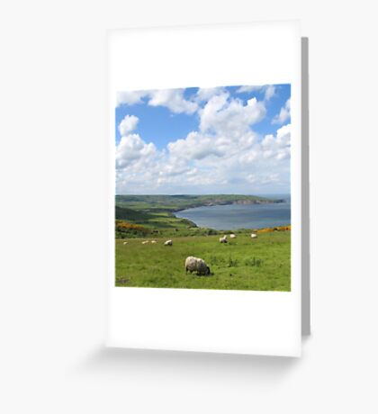A nice place to eat grass! Greeting Card