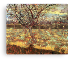 'Apricot Trees In Blossom' by Vincent Van Gogh (Reproduction) Canvas Print