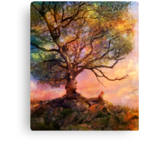 Sunset at Fox Mountain Canvas Print
