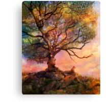 Sunset at Fox Mountain Canvas Print