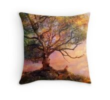 Sunset at Fox Mountain Throw Pillow