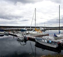 Safe Harbour by Leo  Head
