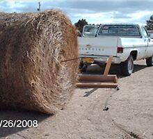 Hay Hauling by nucklheadsports