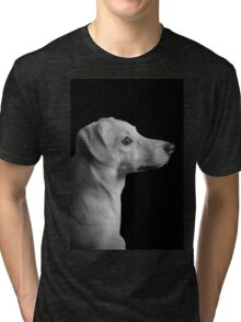 Day dreamer Puppy Tri-blend T-Shirt