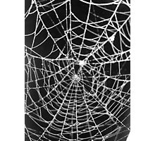 Double Web Photographic Print