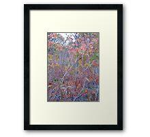 Gloaming Sunset, Marshland Framed Print
