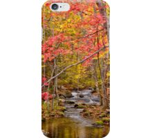 Fall in Acadia iPhone Case/Skin