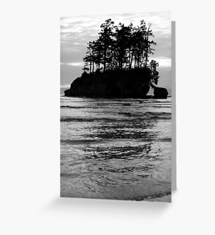 """""""Ghost Ship"""" Greeting Card"""