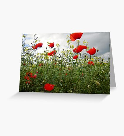 It's Poppy Season #1 Greeting Card