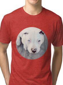 Paloma II Tri-blend T-Shirt