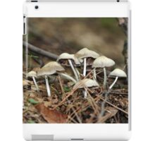mushrooms iPad Case/Skin