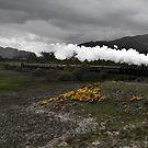 The Strathspey Railway by Roddy Atkinson