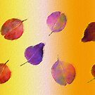Leafy purple moments by sarnia2