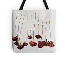 Ten Roses Tote Bag