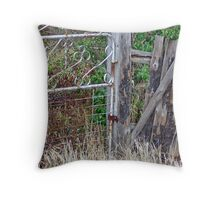 Trespassers Prosecuted - Keep Out Throw Pillow