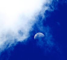 Half Moon by Mary Canning
