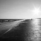 Footprints in the Sand by Terri~Lynn Bealle