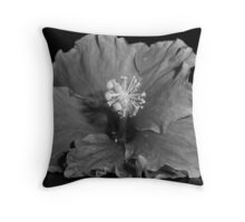 Steel Facade Throw Pillow