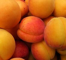 Apricots  by Klaus Offermann