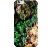 Conichalcite iPhone Case/Skin