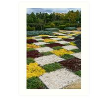Hunter Valley Gardens Art Print