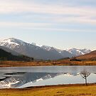 Glen Cannich Scotland by jacqi