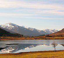 Glen Cannich Scotland by jacqi