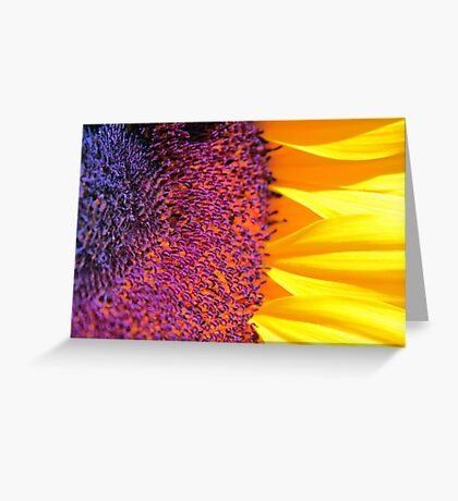 ~you are my sunshine~ Greeting Card