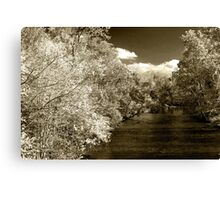 Fall On Little River  Canvas Print