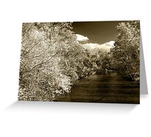 Fall On Little River  Greeting Card