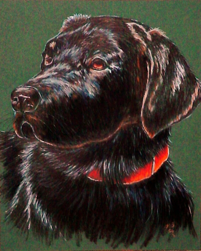 """""""King Charles""""~ Portrait Of A Black Lab by Susan Bergstrom"""