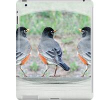 Which Way Spring Today? iPad Case/Skin