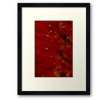 red macro Framed Print