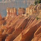 Bryce from top to hoodoos by Meeli Sonn