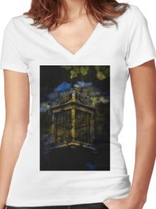 Caged Detail from the Conservatory Women's Fitted V-Neck T-Shirt
