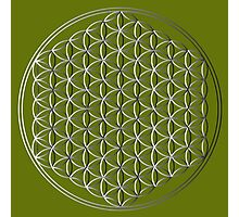 Flower of Life #1 Photographic Print