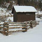 Winter Scene by Zehda