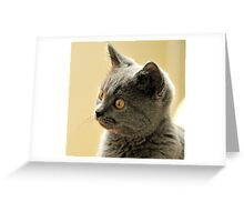 Concentration Greeting Card
