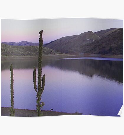 lake beauty Poster