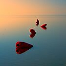 Tranquillity by Tarrby