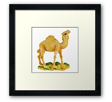 figurine of camel Framed Print