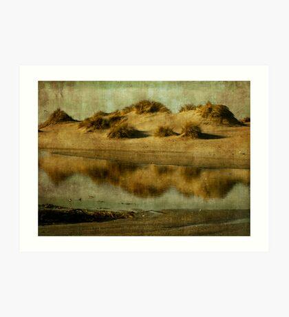 Dune tidal pool Art Print