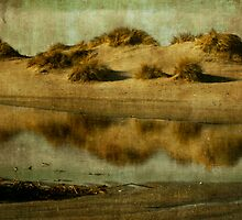 Dune tidal pool by paulgrand