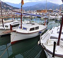 The Port..................................Port de Soller by Fara