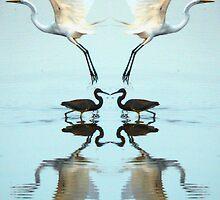 Magic Mirror by Charlie Sawyer