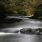 autumn river by jon  daly